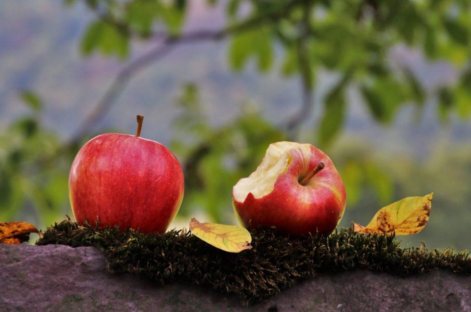 Smaczne i zdrowe są owoce kolorowe!