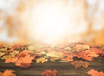 jesień- czyli co dzieci lubią najbardziej