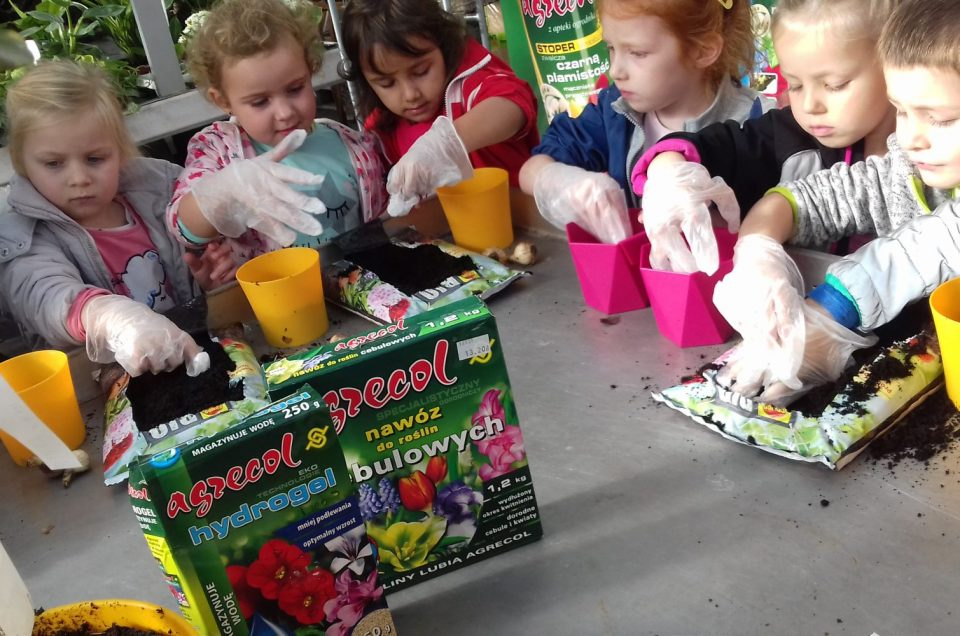 Akademia Małego Ogrodnika – Centrum Ogrodnicze Hebe